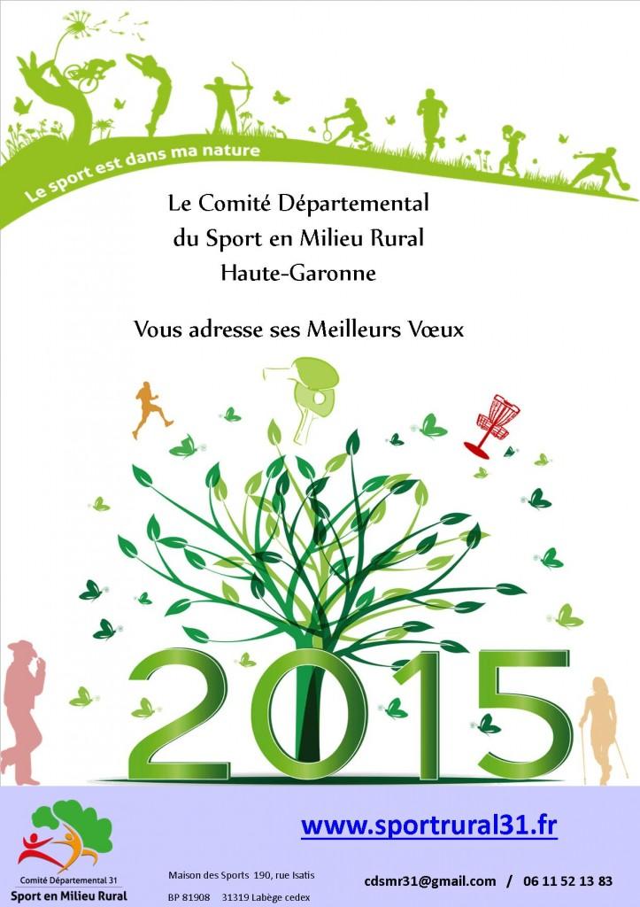 Voeux_CDSMR31-2015
